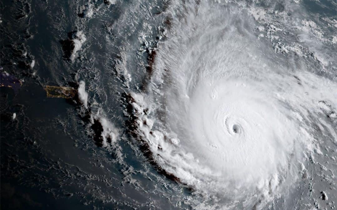 Prepare your business IT for Irma + Emergency contact info